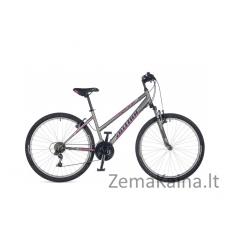 "Kalnų dviratis AUTHOR Ritual Silver matte 18"""