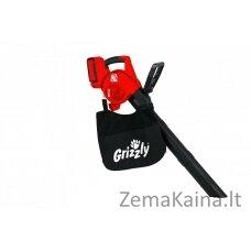 Akumuliatorinis lapų pūstuvas 40V Grizzly ALS 4025 Lion Set