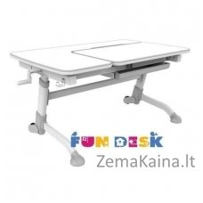 Augantis vaikiškas stalas FunDesk Amare Grey