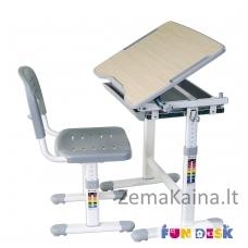 Augantis vaikiškas stalas FunDesk Piccolino grey