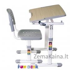 Augantis vaikiškas stalas FunDesk Piccolino II grey