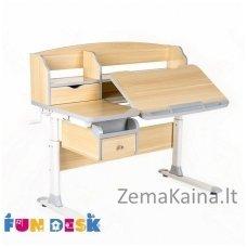 Augantis vaikiškas stalas FunDesk Sognare Grey