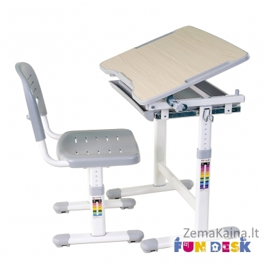 Augantis vaikiškas stalas FunDesk Piccolino grey 3