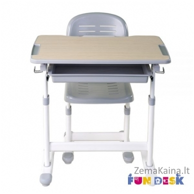 Augantis vaikiškas stalas FunDesk Piccolino grey 2