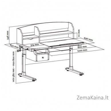 Augantis vaikiškas stalas FunDesk Sognare Pink 3