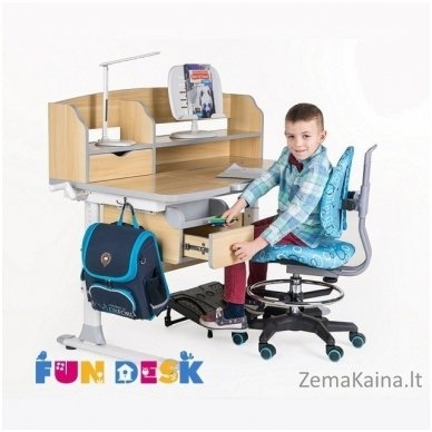 Augantis vaikiškas stalas FunDesk Sognare Grey 4