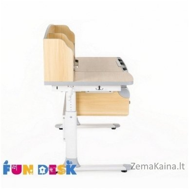 Augantis vaikiškas stalas FunDesk Sognare Grey 3