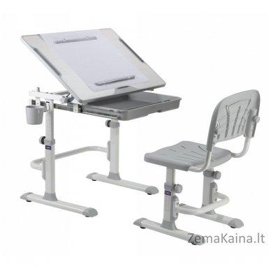 Augantis vaikiškas stalas ir kėdė FunDesk CUBBY KARO WG