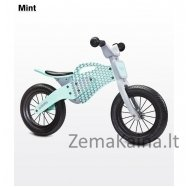 Balansinis dviratukas Caretero Enduro Mint