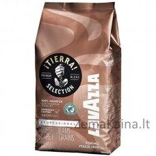 Kavos pupelės  Lavazza Rd Tierra Selection Espresso