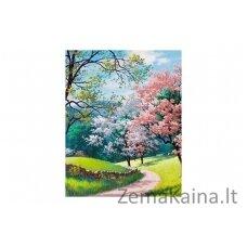 Deimantinė mozaika Gamta WD2345