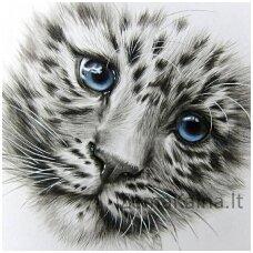 Deimantinė mozaika Katinas WD2342