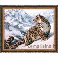 Deimantinė mozaika paveikslas AZ 1520 50 X 40 CM