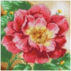Deimantinė mozaika paveikslas - Blooming Peonies AZ-1444