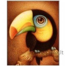 Deimantinė mozaika paveikslas - Cacadu AZ-361