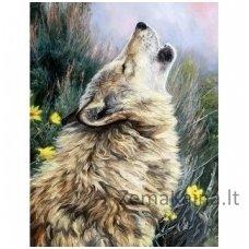 Deimantinė mozaika paveikslas - Hunter Howl AZ-1404