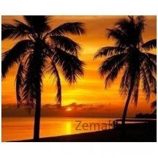 Deimantinė mozaika paveikslas - Palms on the Sunset AZ-1090