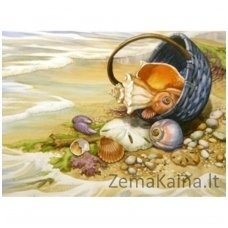 Deimantinė mozaika paveikslas -Seashells in the Basket AZ-1069