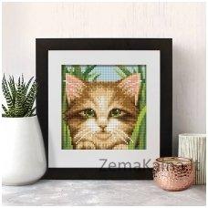 Deimantinė mozaika paveikslas - Green-eye Cat AZ-1640