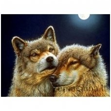Deimantinė mozaika paveikslas - Pair of Wolves AZ-1200