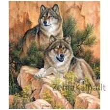 Deimantinė mozaika paveikslas Pair of Wolves AZ-1052