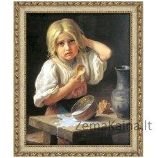 Deimantinė mozaika paveikslas - Spilled Milk AZ-1529