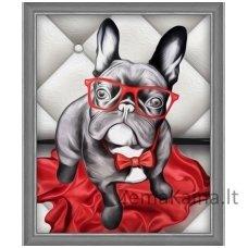 Deimantinė mozaika paveikslas - Stylish Bulldog AZ-1541
