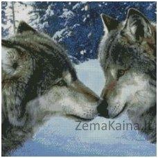 Deimantinė mozaika paveikslas Wolf Kiss AZ-1053