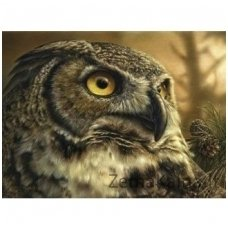 Deimantinė mozaika paveikslas - Owl AZ-1187