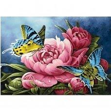 Deimantinė mozaika WD2493 38 x 27 cm