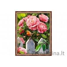 DEIMANTINES MOZAIKOS RINKINYS AZ-1743 40 x 50 cm