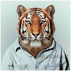 Deimantines mozaikos rinkinys - Mr Tiger WD258