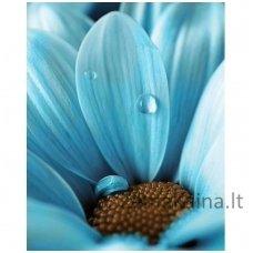Deimantines mozaikos rinkinys - BLUE DROP WD020