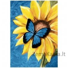 Deimantines mozaikos rinkinys - BUTTERFLY AND SUNFLOWER WD031
