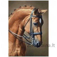 Deimantines mozaikos rinkinys - Horse Jumping WD256