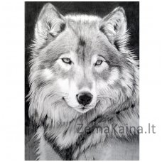 Deimantines mozaikos rinkinys - GREY WOLF WD086
