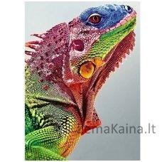 Deimantines mozaikos rinkinys - IGUANA WD065