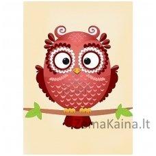 Deimantines mozaikos rinkinys - Owl Phil WD250