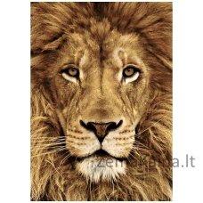 Deimantines mozaikos rinkinys - Lion WD068