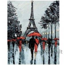 Deimantines mozaikos rinkinys - PARIS IN RAIN WD156