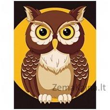 Deimantines mozaikos rinkinys - Night Owl WD308