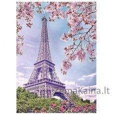 Deimantines mozaikos rinkinys - SPRING IN PARIS WD124
