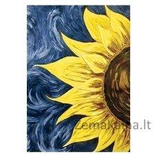 Deimantines mozaikos rinkinys - Sun Energy WD030