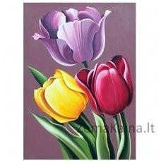 Deimantines mozaikos rinkinys - Tulip Aroma WD021