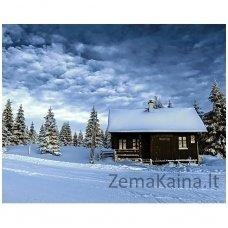 Deimantines mozaikos rinkinys - VALLEY OF SNOW WD106