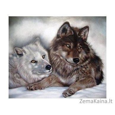 Deimantinė mozaika paveikslas - YIN AND YAN AZ-1402