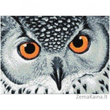 Deimantines mozaikos rinkinys - Owl's Look WD243 2
