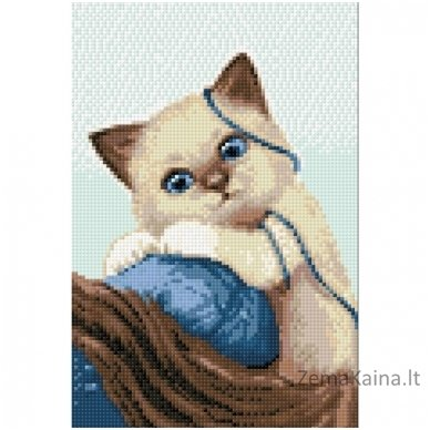 Deimantines mozaikos rinkinys - Thread Ball WD196 2