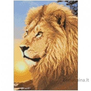 Deimantines mozaikos rinkinys - LION KING WD070 2