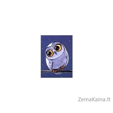 Deimantines mozaikos rinkinys - Owlet WD278